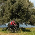 mountain-bike-sardegna-percorsi-gallura