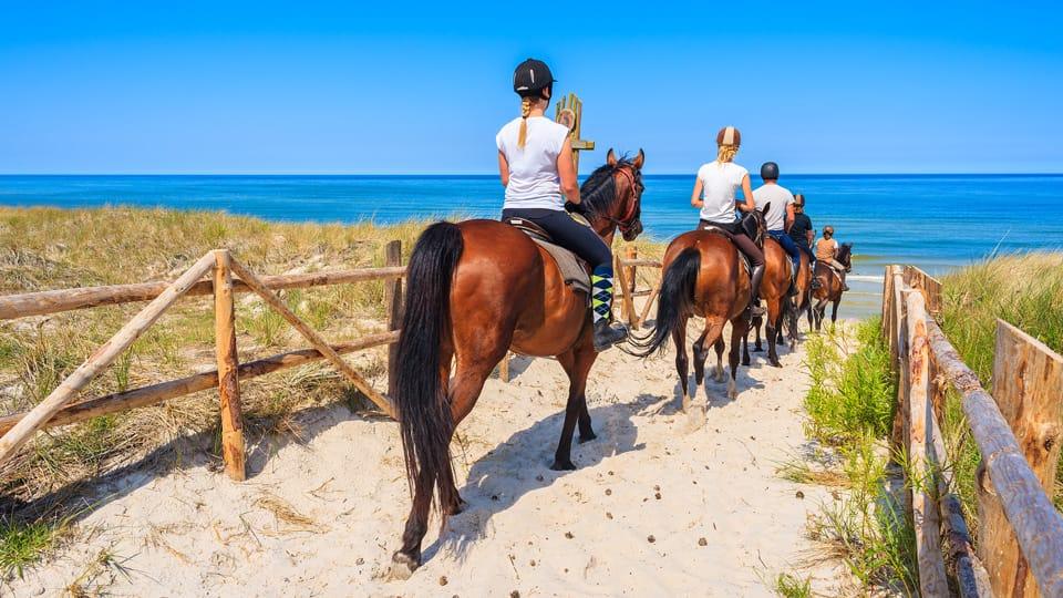 resort-le-dune-sport-equitazione-960